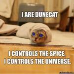 Dooncat
